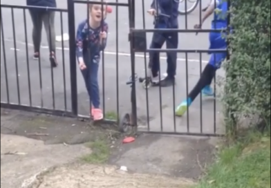TINY TERROR Shocking moment little girl calls woman a 'f****** sl*g'